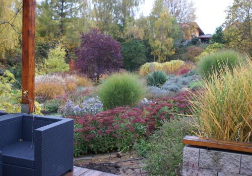 zahrada 05