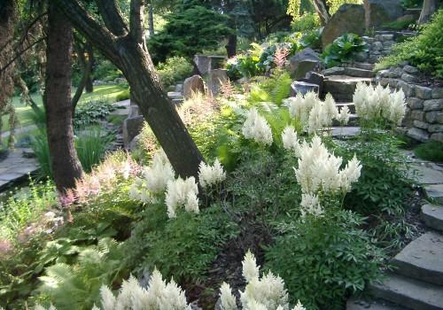 zahrada 06